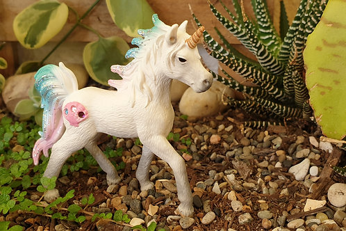 Sea unicorn foal
