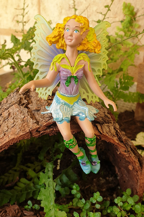 Fairy Bluebell