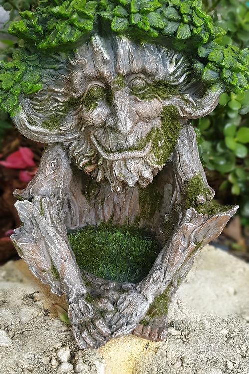 Forrest guardian