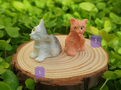 Miniature cats