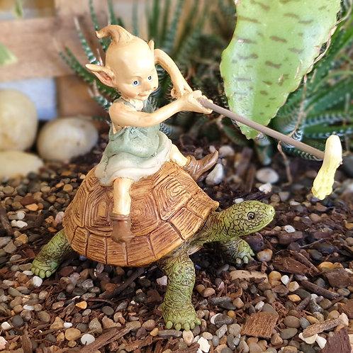 Riding Turtle