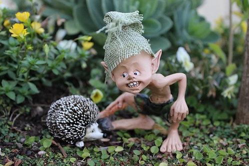 Hedgehog friend