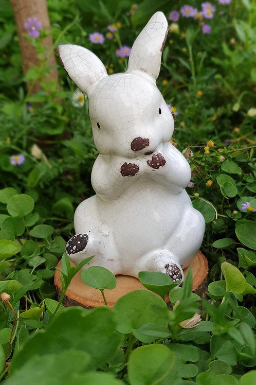Contented Rabbit