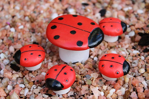 Mini Ladybug table & chair set