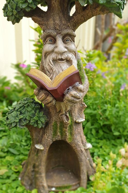 Wisdom tree with book