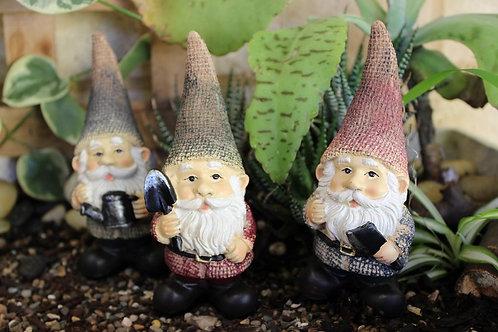 Jeremy the Gnome