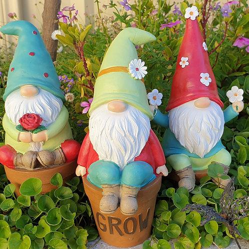 LG Gnome in a pot