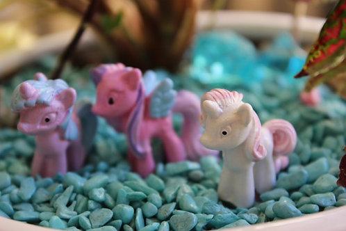 Shanna mini pony