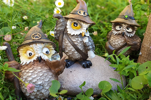 Owl Sage Wizards