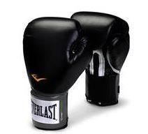 Everlast 12oz boxing training gloves Pro style