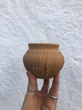 Covid lockdown (2) a series of pots