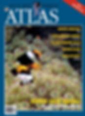 atlas95.jpg