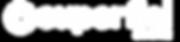 Superfici America Logo White copy.png