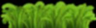 PNGPIX-COM-Grass-Vector-PNG-Transparent-