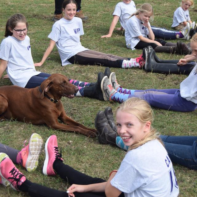 Wickstead Pony Club Day -  CANCELLED DUE TO COVID RESTRICTIONS