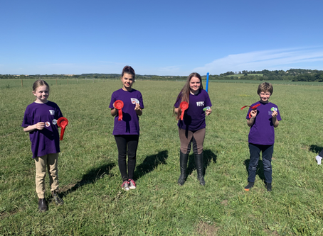 Wickstead Pony Club Summer Camps