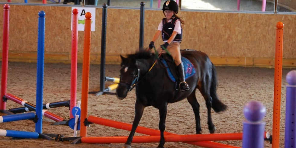 Indoor show Jumping (for sharers and livery clients)