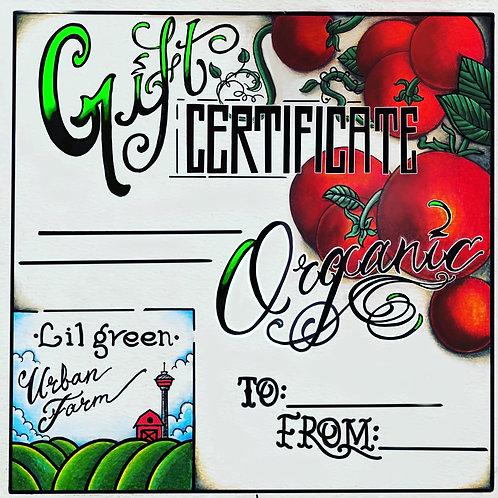 Lil Green Urban Farm Gift Certificate