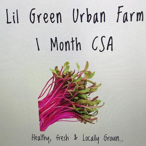 Lil Green Urban Farm Microgreen CSA - 1 Month Plan