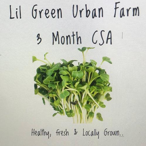 Lil Green Urban Farm Microgreen CSA - 3 Month Plan