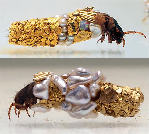 Henri Duprat: collaboration with caddis fly larvae.