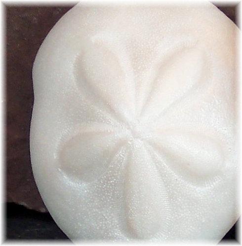 Sand Dollar Soap