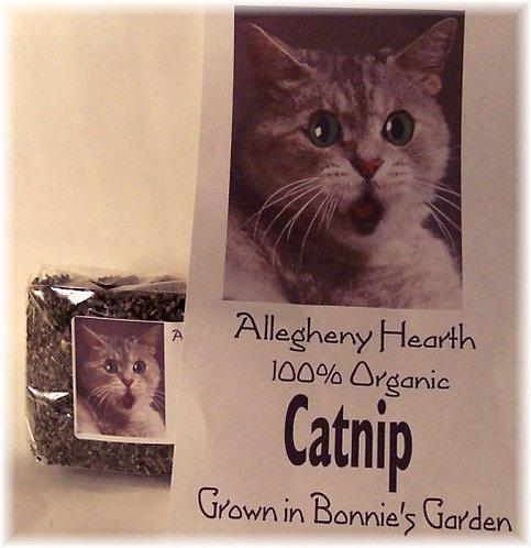 Organically grown catnip