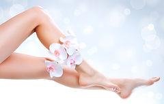 depilação-pernas-perdizes-estética