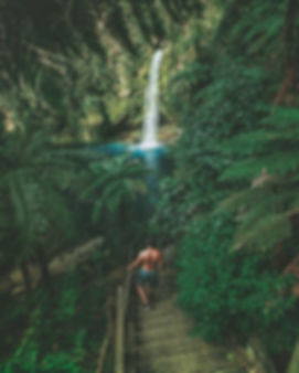 🌴New Zealand waterfalls🌴_-_Being able