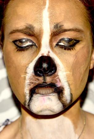 Love for Pitbull  Creative Makeup