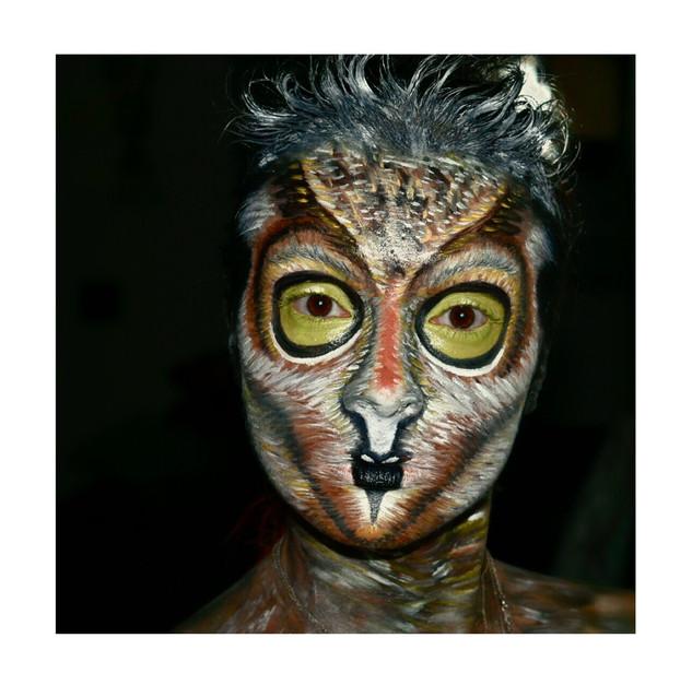 Love for Owl Creative Makeup