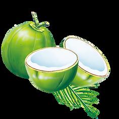 kisspng-coconut-water-coconut-milk-powde