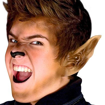 Werewolf Ears Latex Appliance