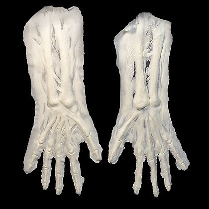 Skeleton Arms (foam)