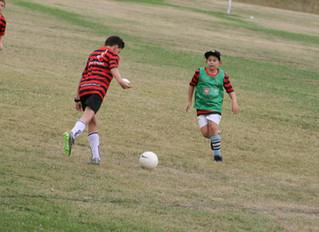 Football and Netball Academies
