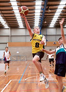 basketball-832.jpg