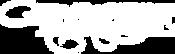 logo-RogueWhite.png