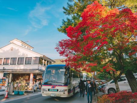 京都趴趴走-楓葉名所南禪寺