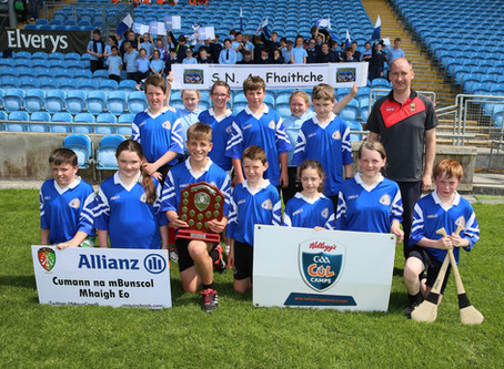 Fahy NS Win Cumann na mBunscol County Hurling Final.