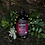 Thumbnail: Elderberry Tonic