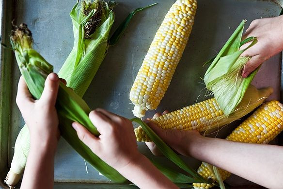 Maïs rapide et parfait