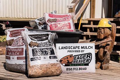 Mulch with Beaver.jpg