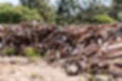 Firewood WEAR.jpg