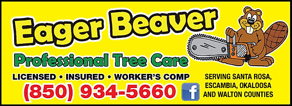 Tree Service. Eager Beaver Professional Tree Care Pensacola and Gulf Breeze Florida