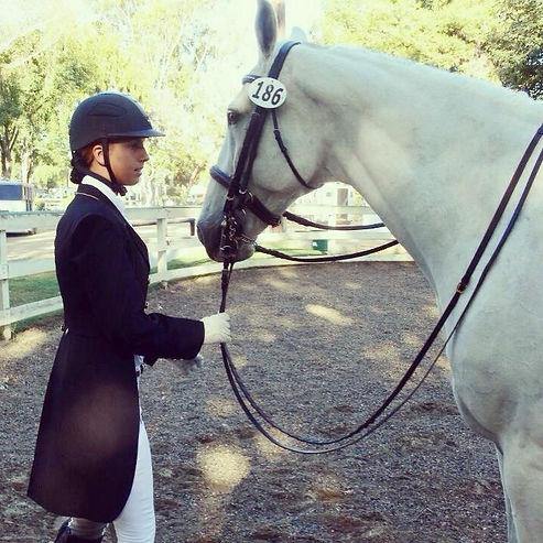 fei dressage horse trainer