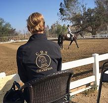 dressage horse trainer