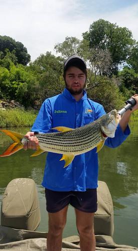 Zambezi Fishing