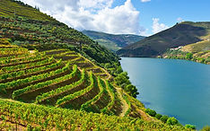 port-douro-xxlarge.jpg