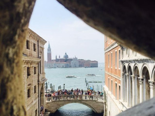 Highlights of Out In Venice!