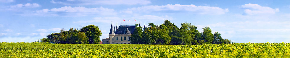 Bordeaux Vineyards and Chateaux.jpg